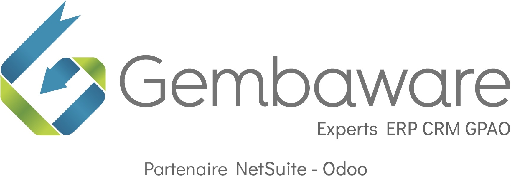 Conseil ERP CRM GPAO NetSuite Odoo Toulouse France