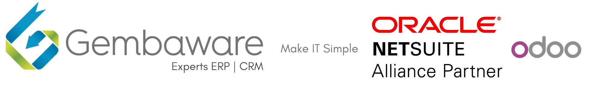 Conseil Intégrateur ERP CRM NetSuite Odoo Toulouse