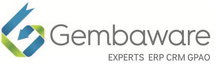 Logo Gembaware intégrateur ERP CRM Oracle NetSuite